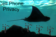 Blue stingray over cell-phone antennas